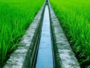 زمین های کشاورزی و صنعتی